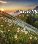 013 Koledar Slovenija, moja dežela